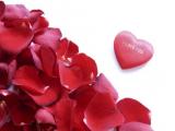 K sviatku zamilovaných ja malé prianie mám, nech máme veľa krásnych chvíľ a nič nechýba nám.